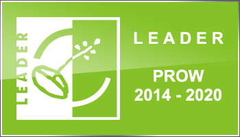 starter_strona programowa leader