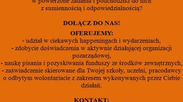"""Stowarzyszenie LGD """"Dolina Stobrawy"""" poszukuje wolontariusza!"""
